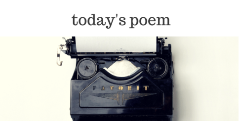 The Poetry Shed image